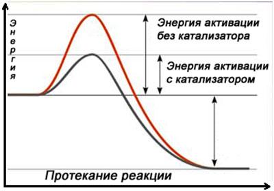 Т-19-ris_1